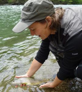 Séjours pêche à la mouche Espagne Noguera Pallaresa