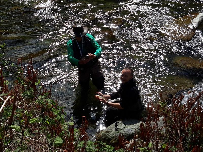 Guide de pêche à la mouche dans les Pyrénées. Apprendre la pêche à la mouche. Pêche en nymphe