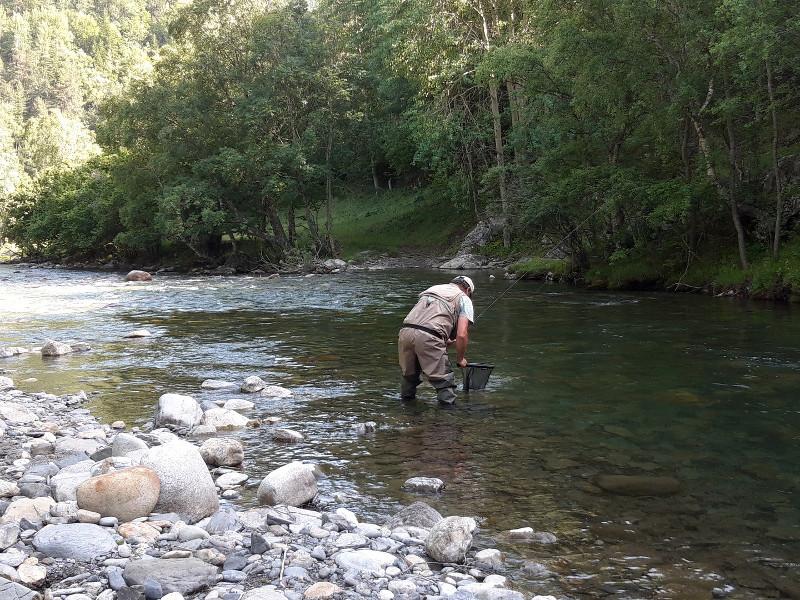 Guide pêche mouche Pallaresa