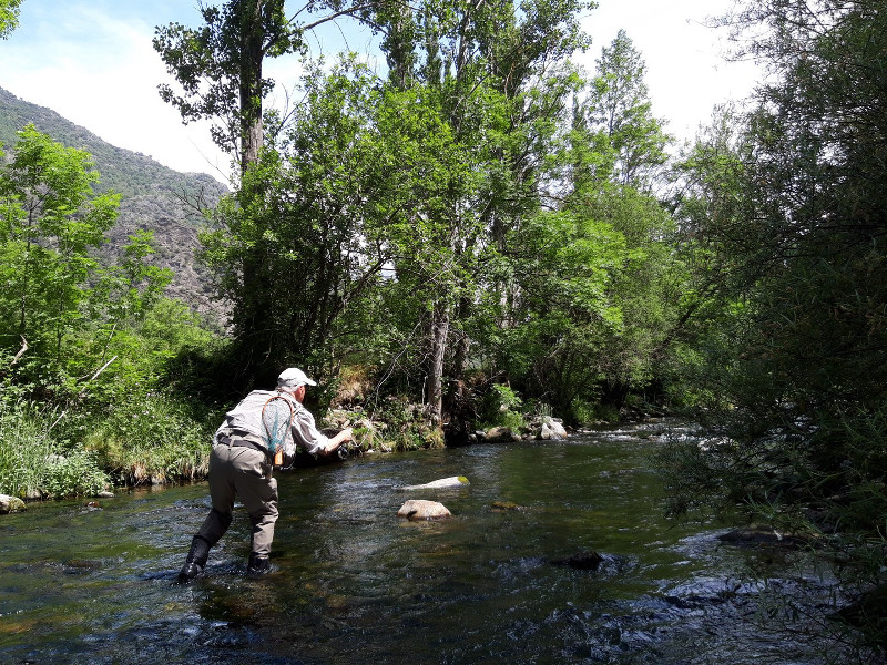 Guide pêche Pallaresa