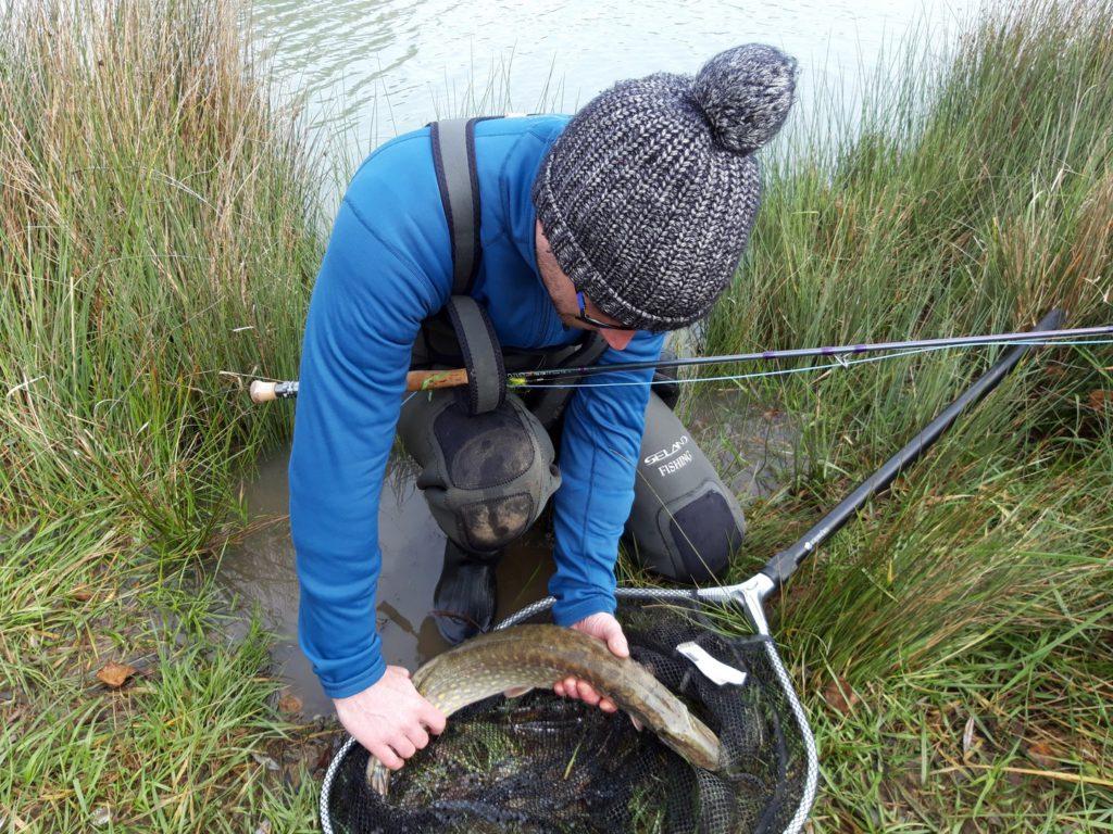 Apprendre la pêche du Brochet à la mouche
